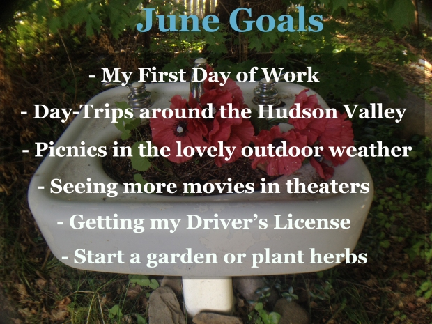 June Goals Blog